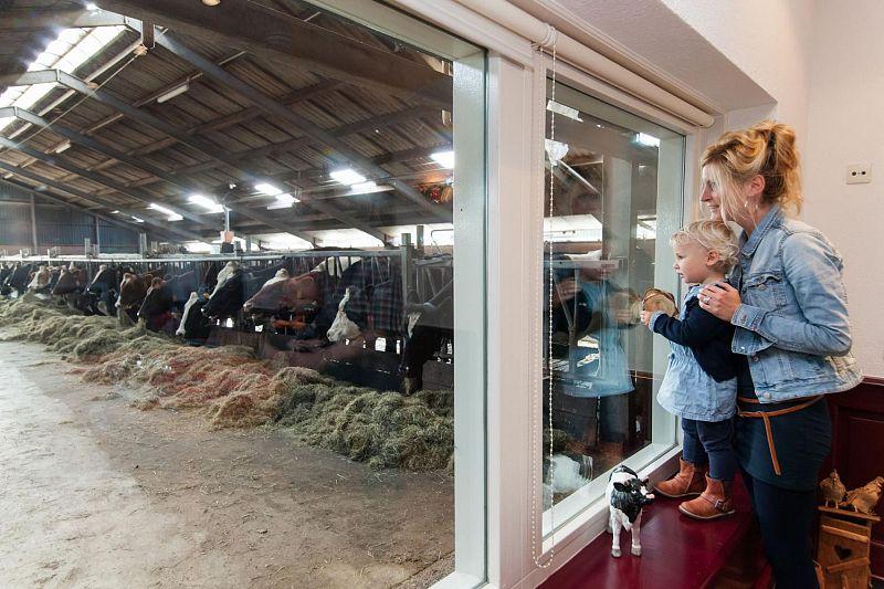 Uitzicht op de stal in de boerenhuiskamer
